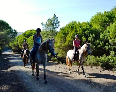 Algarve Horse Riding the best place for your riding holiday!!!