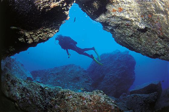 Algarve Diving Beaches
