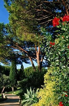 Vilalara Thalassa Resort Garden