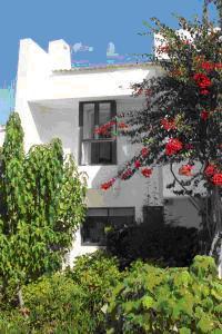 Algarve Mouragolf Village