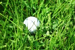 Vale do Lobo Royal Golf Course Banner