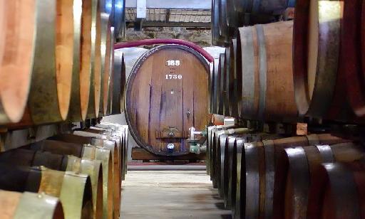 Port Wine Barrels